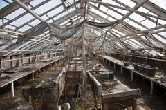 old derelict greenhouse - stock photo