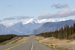 alaska highway, north of whitehorse towards haines junction, st. elias mounta - stock photo