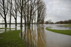 flood, january 2011, poller meadows, koeln-poll, cologne, north rhine-westpha - stock photo