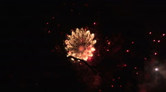 Fireworks viewed through branches of tree Stock Footage