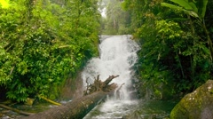 A small waterfall in the rainforest Stock Footage