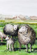 sheep on the pasture, westerhever village, north frisia, schleswig-holstein,  - stock illustration