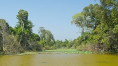 Typical pond on a hot dry season. cambodia Stock Footage