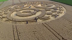 Crop Circle Raisting Ammersee Germany July 2014 Stock Footage