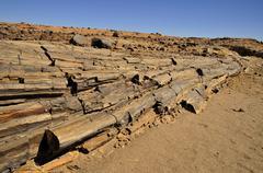Petrified trees in the mik mountains, damaraland, namibia, africa Stock Photos