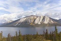mountain at windy arm of tagish lake, indian summer, leaves in fall colours,  - stock photo