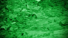 night pest - rat. imitation night vision device - stock footage