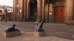 Dogs in front of the Cathedral of Las Palmas de Gran Canaria, Canary Islands Stock Footage
