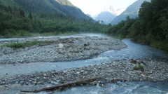 Wide mountain stream, rocks and woody debris in water, wildlife Stock Footage