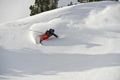deep-snow skier, freerider, doing a turn, tyrol, austria, europe - stock photo