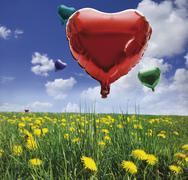 Stock Photo of balloons filled with helium, blue sky, spring meadow