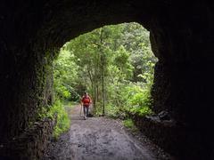 woman walking through a tunnel in a laurisilva, el canal y los tilos biospher - stock photo