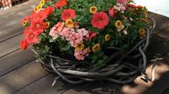 Flower Basket Stock Footage
