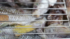 Saltwater fish in grill Stock Footage