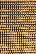 Rungs, wood stack, wooden staffs, roundwood Stock Photos