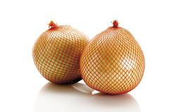 two honey pomelos in a net - stock photo