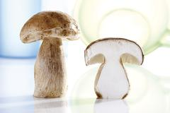 Stock Photo of porcini mushrooms