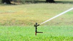 Sprinkler spraying water on backyard green grass. Stock Footage