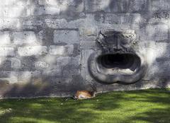 Water gargoyle at the fortress munot, schaffhausen, canton schaffhausen, swit Stock Photos