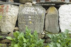 Mani wall, mani stone, dudh kosi valley, solukhumbu, khumbu, sagarmatha natio Stock Photos