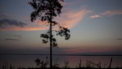 Stock Video Footage Pine at sunset northern lake - stock footage