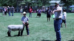 Auctioneer sells young people's sheep during small town annual festival Stock Footage