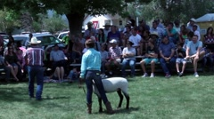 Auctioneer sells young people's sheep during small town annual summer festival - stock footage