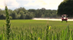 Tractor spray green crop field on farm sunny day. Focus change. Stock Footage