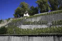 Castle hill and rose garden, rapperswil, st. gall, switzerland Stock Photos