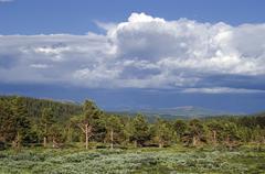 thunderclouds, jotunheimen national park, norway, scandinavia - stock photo