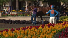 Trainers walking a horse around a track with a jockey statue and flower in front Stock Footage