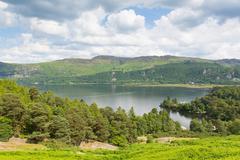 Brandelhow Bay Derwent water Lake District Cumbria England UK - stock photo