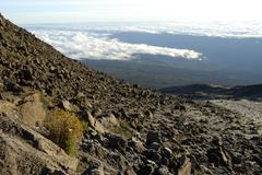 Slope covered with rocks and view onto clouds kilimanjaro kikelewa route tanz Stock Photos
