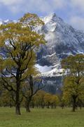 Stock Photo of autumn, ahornboden with spritzkarspitze, eng, austria