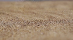 Marine grains of sand falling on the sand in slow motion - stock footage