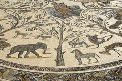 Mosaic with animals archaeological excavation of antique roman city volubilis Stock Photos