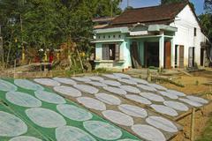 Drying of rice paper for spring rolls, quang nam province, vietnam Kuvituskuvat