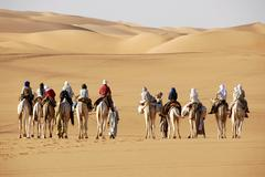 camel trekking towards sanddunes in the desert mandara libya - stock photo