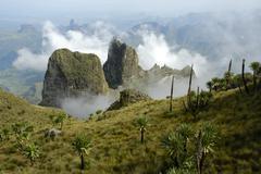 clouds gathering around craggy mountain formations with giant lobelias lobeli - stock photo