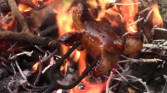 Roasting sausages over a fire Stock Footage