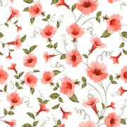 Bindweed , floral background, seamless pattern - stock illustration