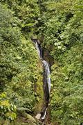 waterfall in rainforest, arenal hanging bridges, costa rica - stock photo