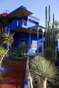 distinct architectonical feature blue house with cactus in garden jardin majo - stock photo