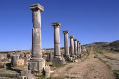 Stock Photo of excavation of the ancient roman city volubilis, morocco, africa