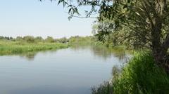 Havel river landscape (Brandenburg, Germany). Stock Footage
