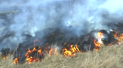 Fire in the dry grass field. - stock footage