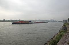 rhine with freighter near krefeld-uerdingen, krefeld, north rhine-westphalia, - stock photo