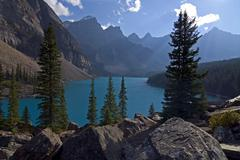 Stock Photo of backlit trees and boulders at the shore of moraine lake with the wenkchemna p