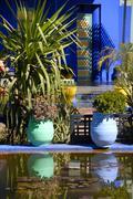 Shining luminous blue of flowerpots mirrors in water garden jardin majorelle  Kuvituskuvat