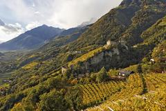 Stock Photo of tirol castle viewed from village of tyrol, near meran, south tyrol, italy